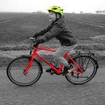 frog_bike_78